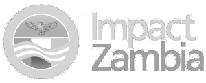 Impact-Zambia-Logo-reverse black-grey5